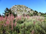 Ardèche et Thueyts sous le cagnard