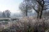 Campagne hivernale d'un petit matin de décembre 2010