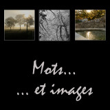 Mots et images - Pictures and words