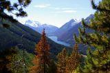 Mountain Pine Beetle research trip