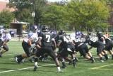 panther defense