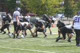 panther offense