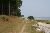 the running trail on the sound