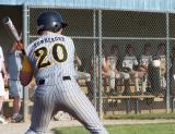 nick at the plate