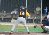 aaron at the plate