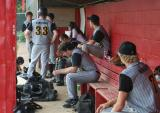 in the dugout