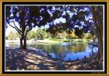 Costa Mesa Park 15mm (20) CS5 Simplify4.jpg