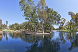 Costa Mesa Park 15mm (29).jpg