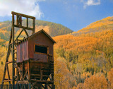 fall_color_-_colorado_2009