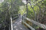 Terra Ceia Trail