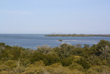Terra Ceia Bay