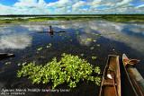 Lake Kaningbaylan, Loreto, Agusan Marsh