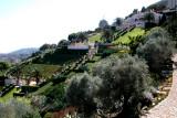 The Baha'i Gardens in Haifa: The international headquarters of the Baha'i faith is here.