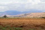 View from the Hula Valley looking toward the Golan Heights. Mt. Hermon is in the background.