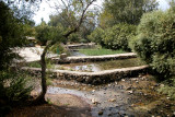 The Banias Spring - one of the principal sources of water for the Jordan River.