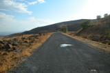 Moshe took us on this back road so we could view the Jordan River. Sea of Galilee is in the background (to the left).