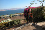 Judy at the Sea of Galilee with mountains in Jordan in the background.