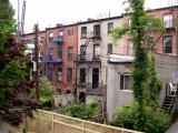 Brooklyn style backyards - photo from the back of Ken and Pam's house in Cobble Hill, Brooklyn