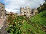 Windsor Gardens 4
