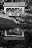 Our bridge to nowhere
