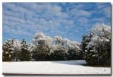 A Snowy Nashville Morning