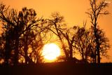 0128-a murray sunset