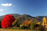 5826 kiewa valley hwy
