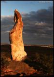 6905- Sculpture Symposium within the Living Desert, Broken Hill