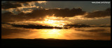 6922- sunset at the Living Desert