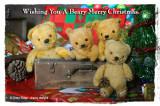 Wishing You A Beary Merry Christmas
