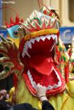 7923-dragon.jpg