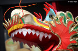 7929-dragon.jpg