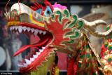 7974-dragon.jpg