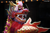 Chinese New Year - Dragons