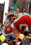 8167-dragon- dai loong head