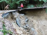 26 Road To Green River Horse Camp, Not passable About Mile four