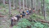 Trail Crew.JPG