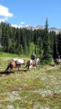 Snowgrass Flat pack-out.jpg