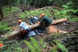 June 3, 2006                       Placing a log