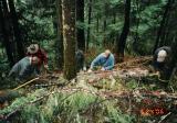 May 24, 2005   Splitting Cedar for crib wall