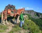 Sherri and Captain looking at the elk