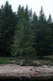 Lac Du Troites