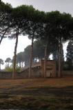Rain at Pompeii