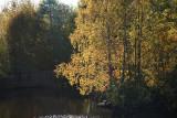 River Kolbäcksån in autumn light