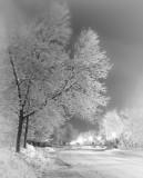 Un soir d'hiver...