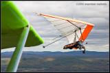 _ADR3602 glider wf.jpg