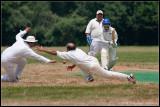 _ADR1758 cricket 2wf.jpg