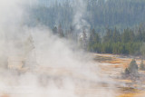 _MG_9547 Yellowstone w.jpg