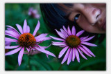 july 3 flowers