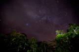Danum Valley - Sabah